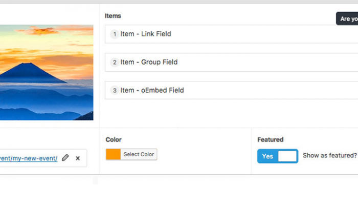 Custom Fields Plugin for WordPress